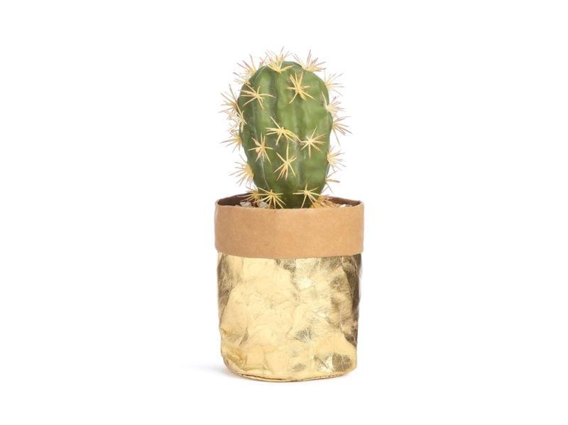 Primark-Home_GOLD-FOIL-CACTUS-PLANT,-€6