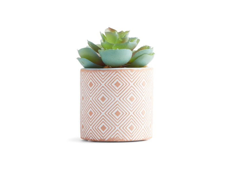 Primark-Home_Small-Terracotta-Plant,-$5,-€4-(2)