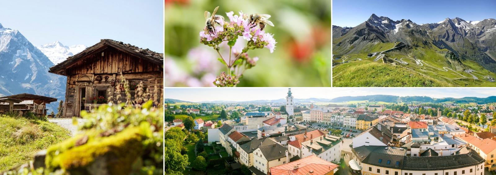 Primavera in Austria Carinzia Salisburgo Salisburghese Festival Pasqua Vacanze famiglia Kinderhotels Mondi di Cristallo Swarovski DESK