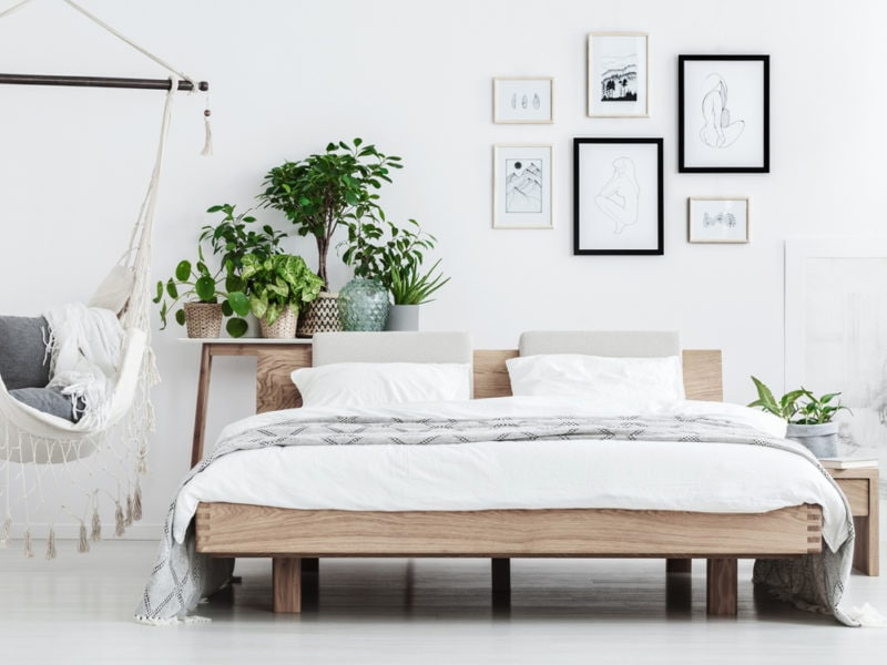 Natural bedroom with plants