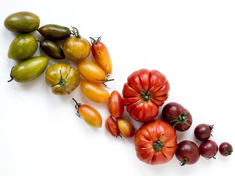 rezel-apacionado-dieta colori-unsplash