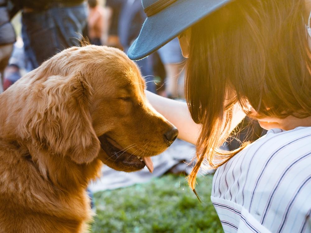 02-cane-ragazza-pet-therapy