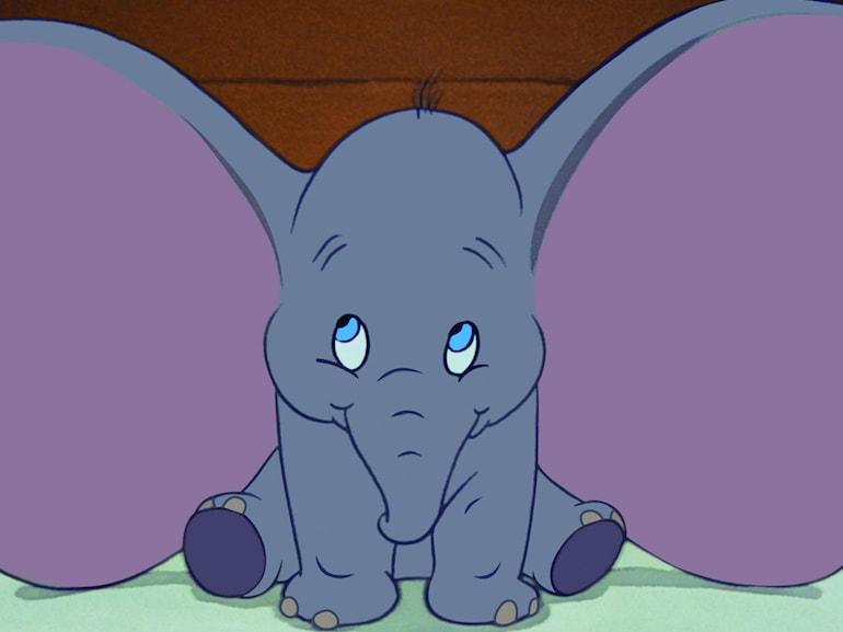 Dumbo Orecchie