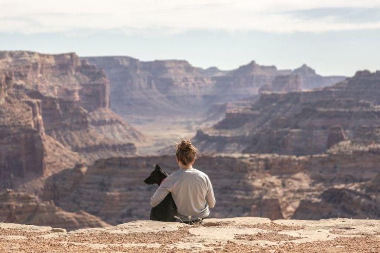 Ogni animale apporta benefici diversi all'uomo: sapete qual è il vostro?