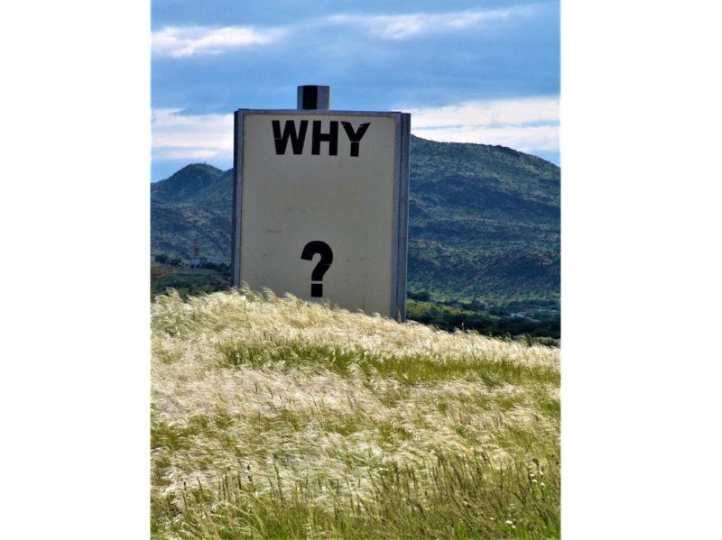 06-cartello-why-perche