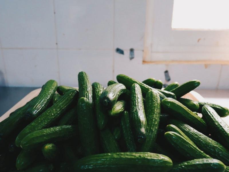 03-zucchine