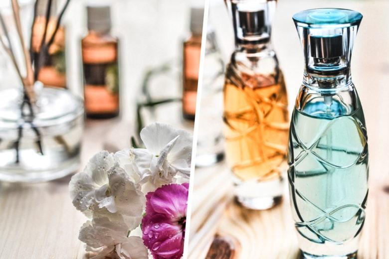 Glossario profumeria: le parole più famose per descrivere le fragranze