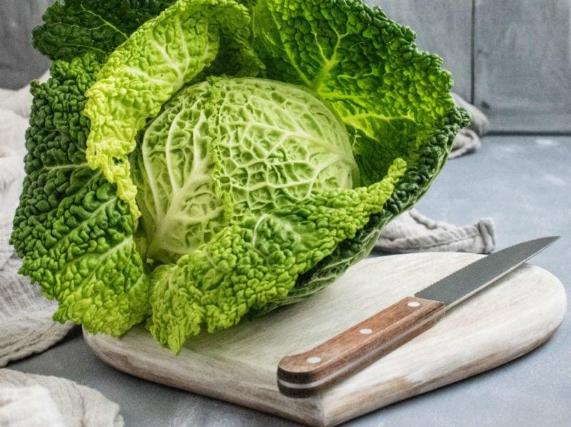 cavolo vegetali