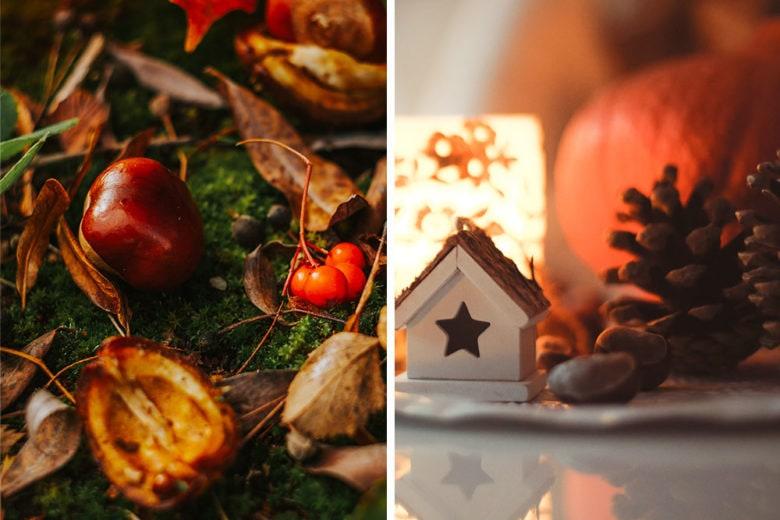 Profumo di castagne: le fragranze più evocative per riscaldare le giornate fredde
