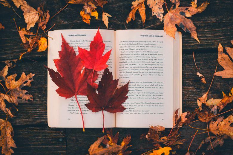 10 nuovi libri da leggere a Novembre (e regalare a Natale)