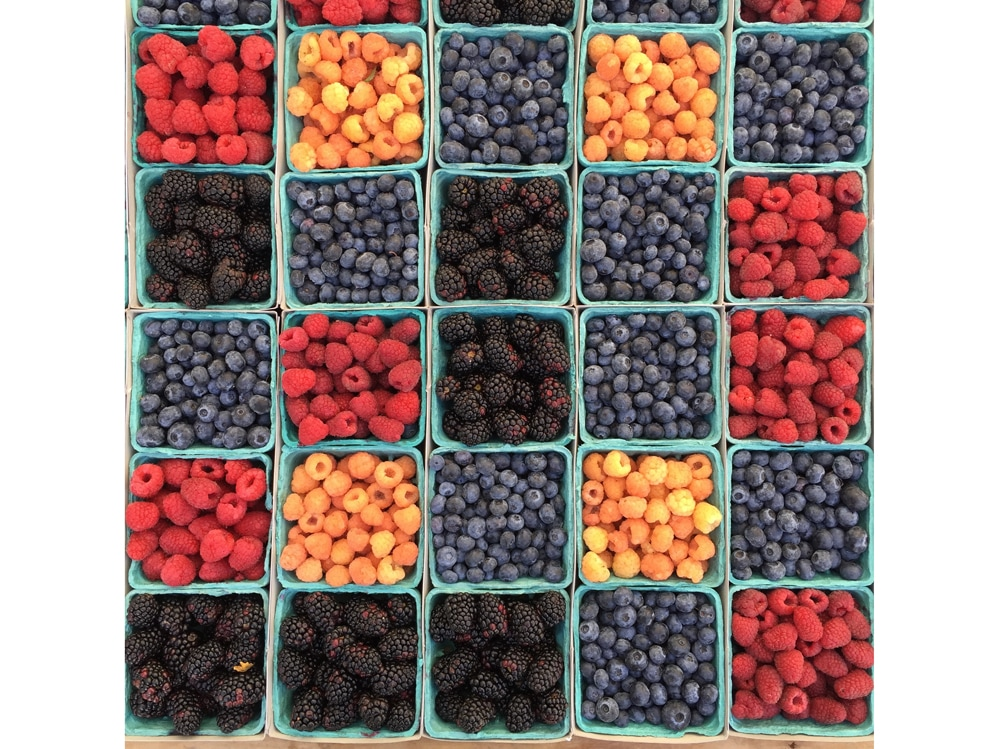 02-frutti-bosco