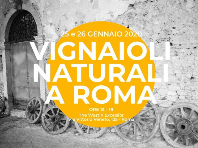 Vignaioli Naturali a roma westin excelsior