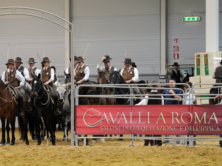 cavalli a roma fiera di roma