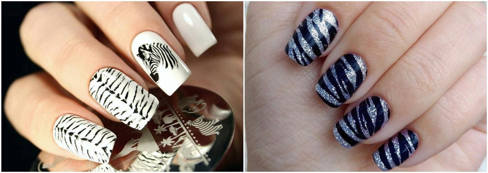 unghie zebrate zebra nail art cover desktop