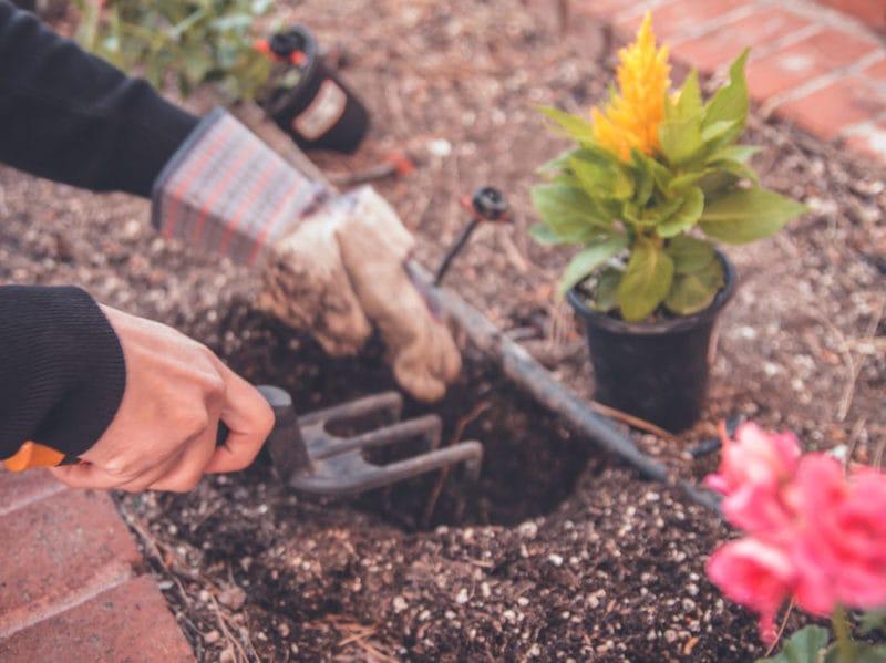 05-giardinaggio