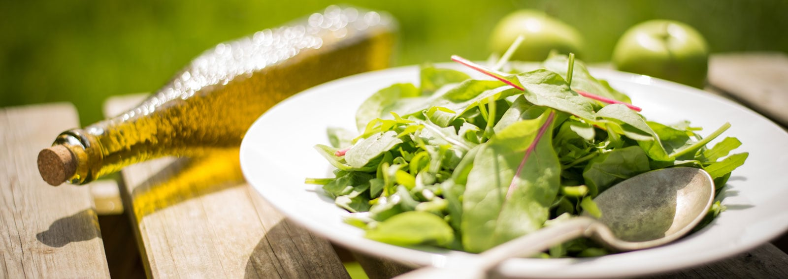 visore-dieta-magnesioDESK