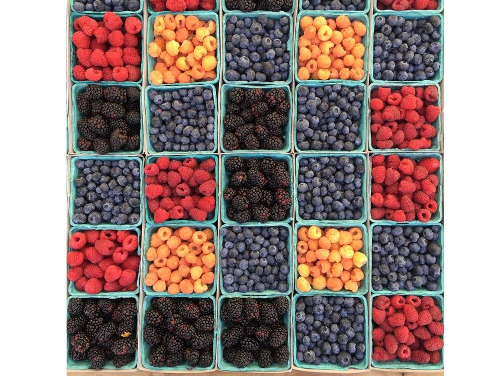 04-frutti-bosco
