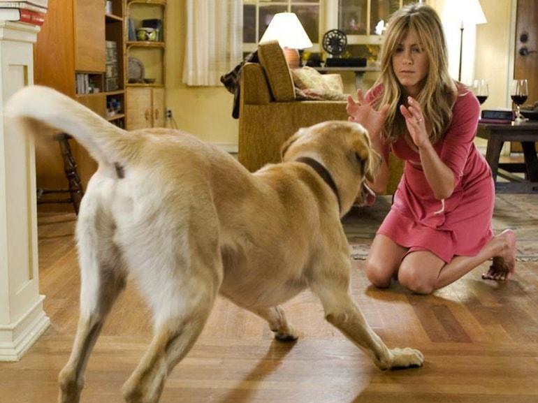 Jennifer Aniston vestito rosa