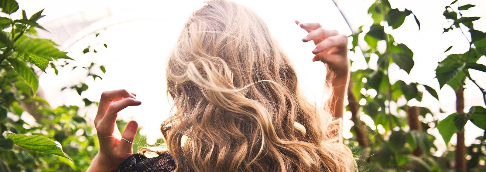 capelli-desktop