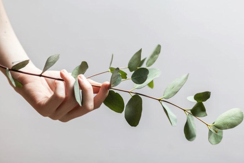 20 buone abitudini di chi vive green: quante ne seguite?