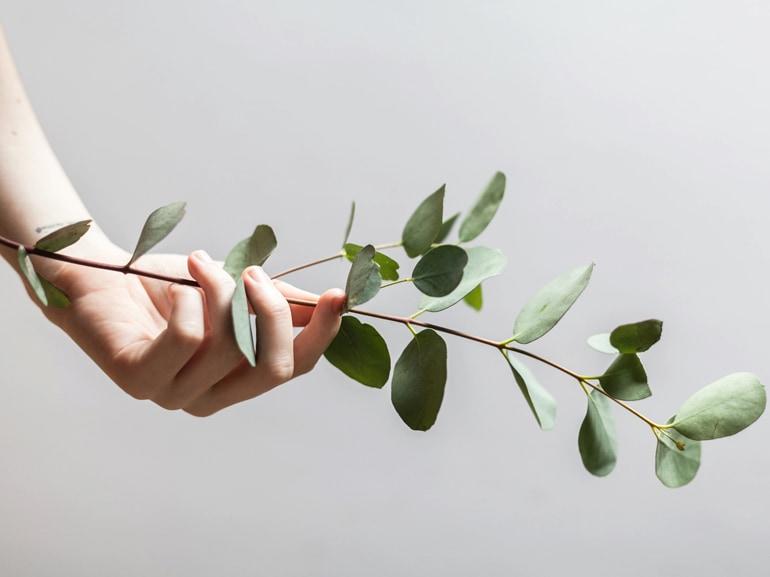 visore-abitudini-greenMOBI