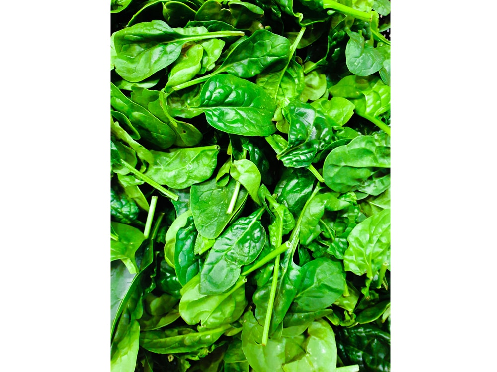 06-spinaci
