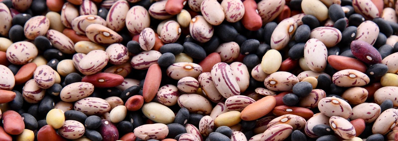 DESKvisore-dieta-legumi