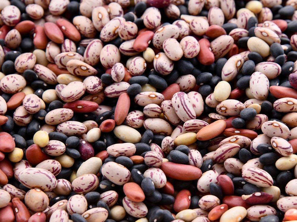 EVIvisore-dieta-legumi