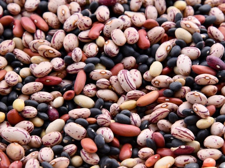 MOBIvisore-dieta-legumi