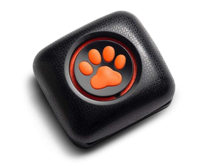 monitor cani