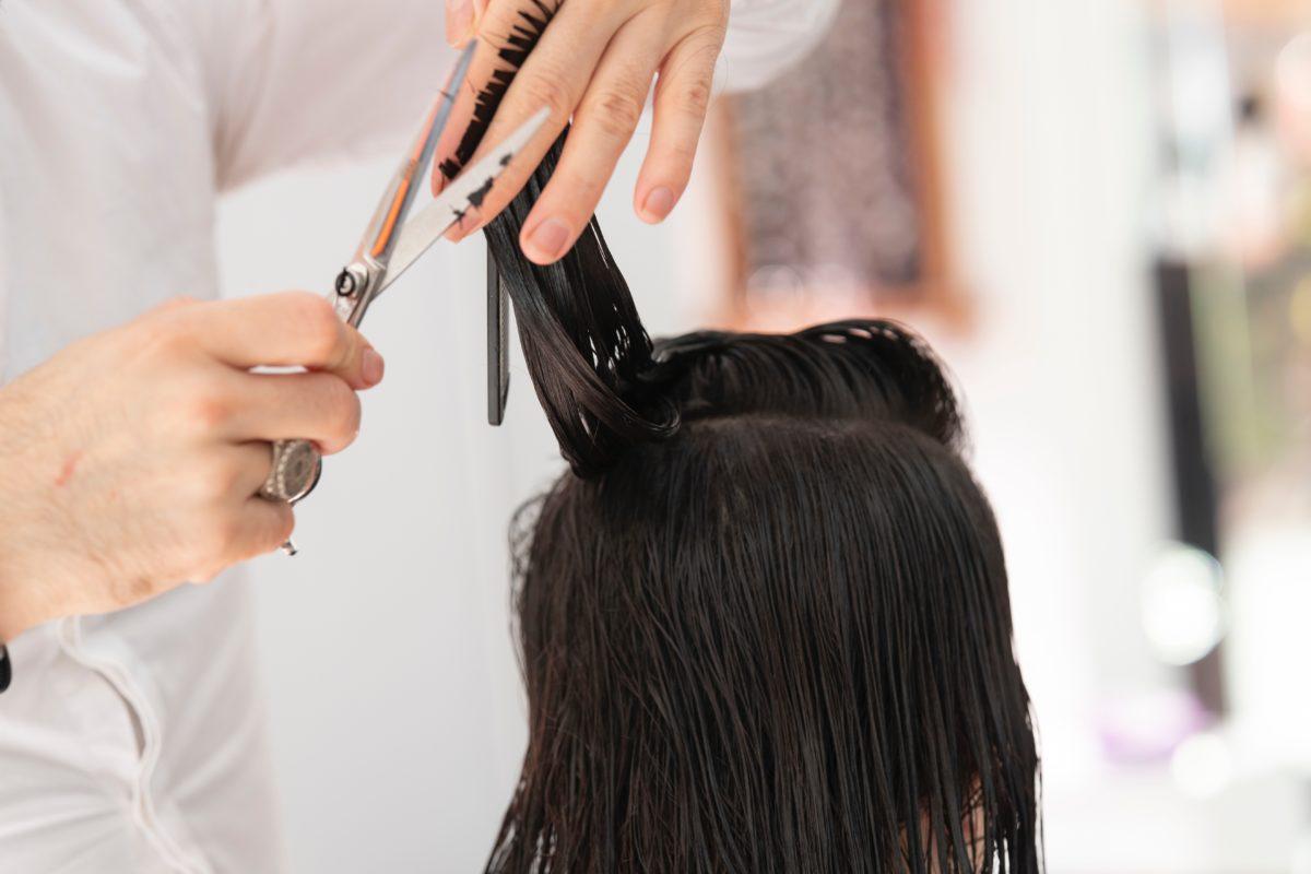 person-cutting-hair-3356170