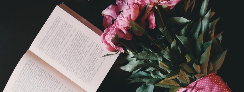 visore-libriDESK