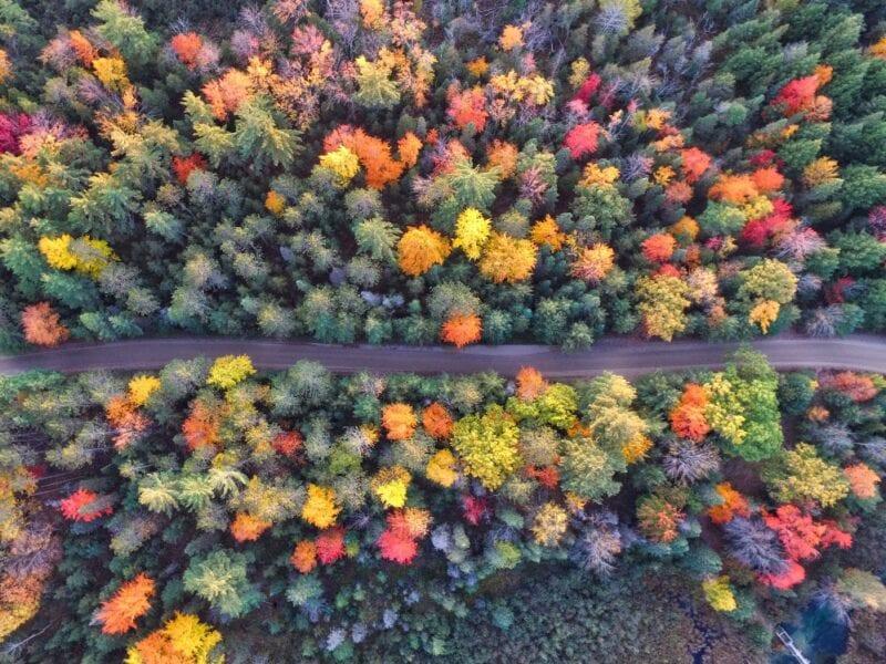 aaron-burden-Qy-weekend autunno-unsplash