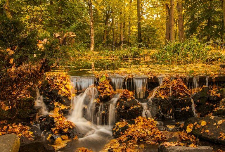 Weekend d'autunno: 3 idee per gite bellissime (a distanza di sicurezza)