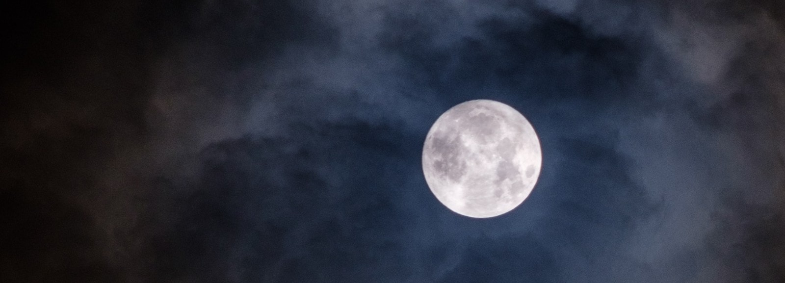 luna blu hero