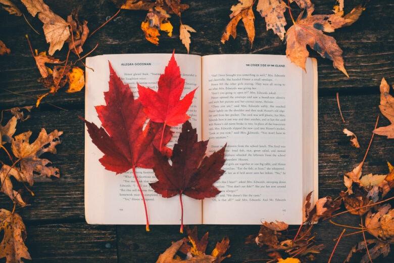 10 nuovi libri da leggere a Novembre