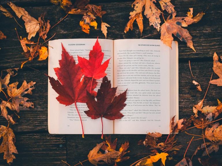 visore-libri-novembreMOBI