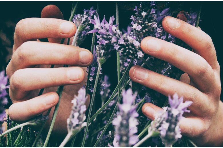Migliore crema mani e unghie: trovate quella giusta per voi!