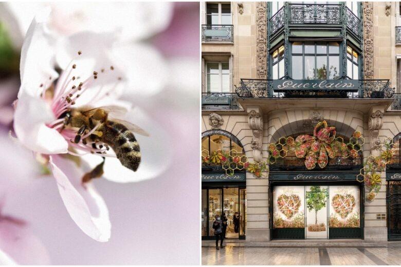 Guerlain World Bee Day 2021: la raccolta benefica a sostegno delle api