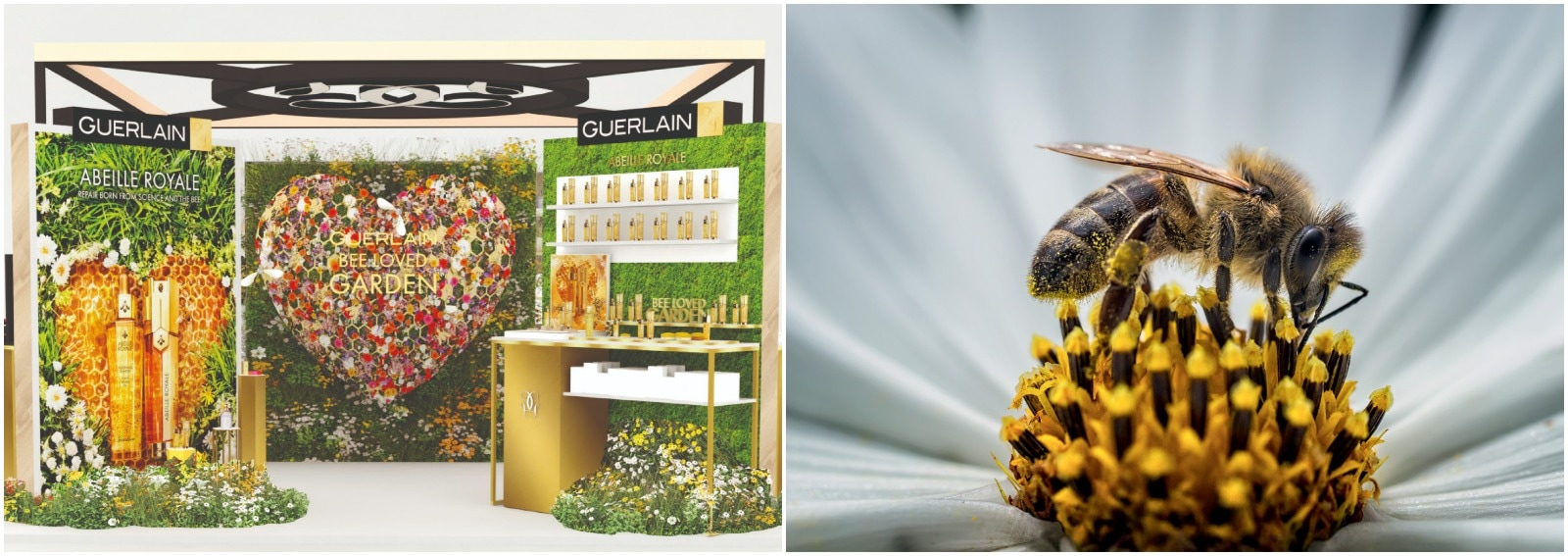 guerlain-bee-garden-2021-cover desktop