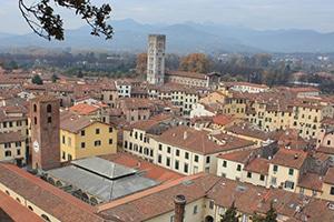 Grazia City Guides