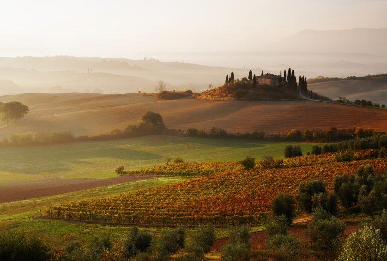 """Che ne dite di un """"buon"""" viaggio enogastronomico in Italia? Ecco le mete top"""