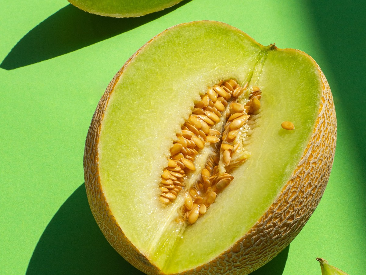 Melone 1