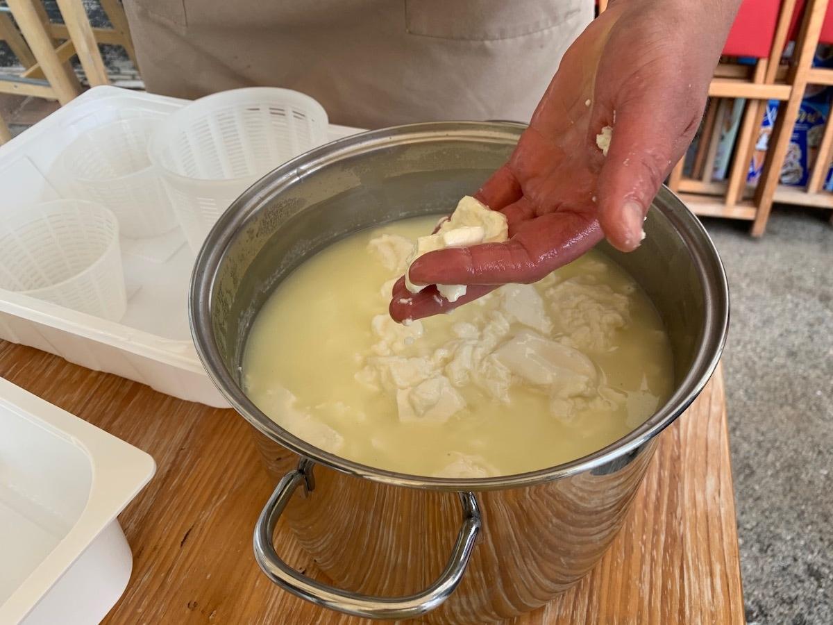 formaggio azienda agricola pelini