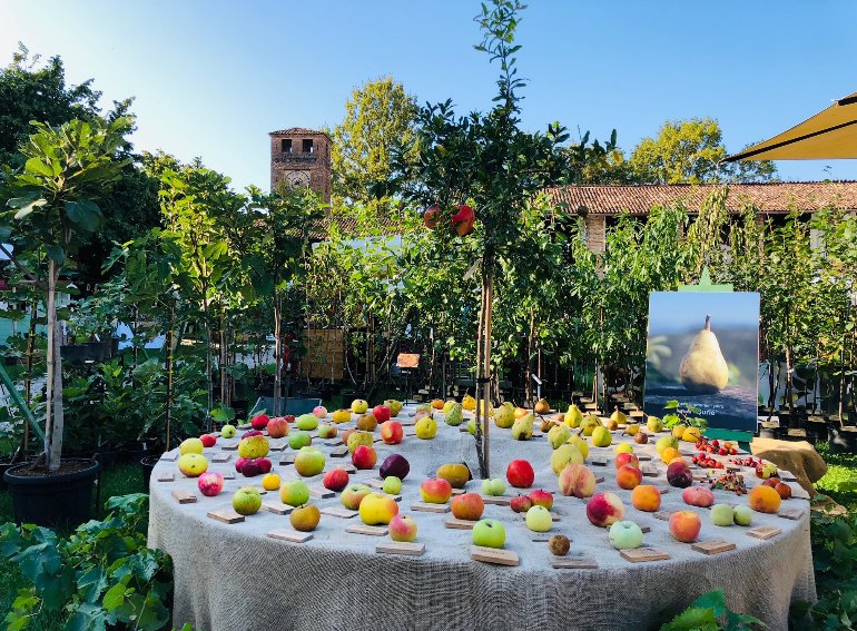 Frutti Castello