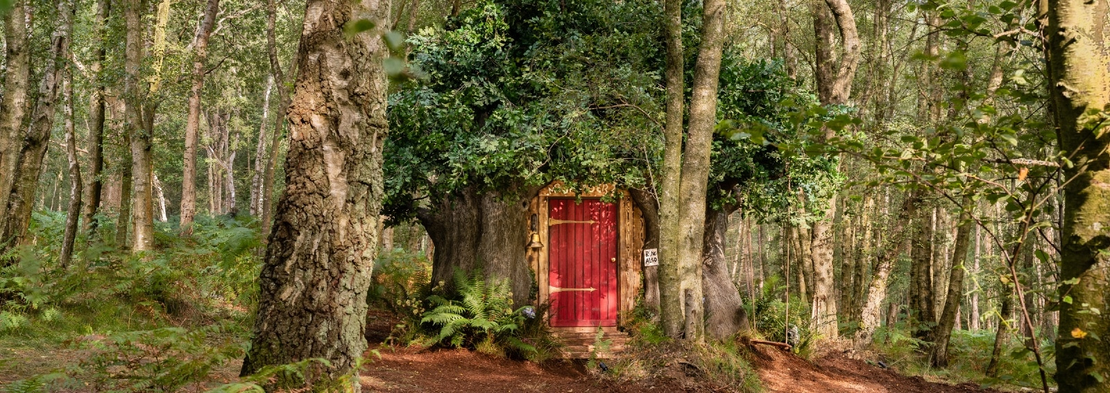 Winnie the Pooh House Airbnb - CREDIT Henry Woide